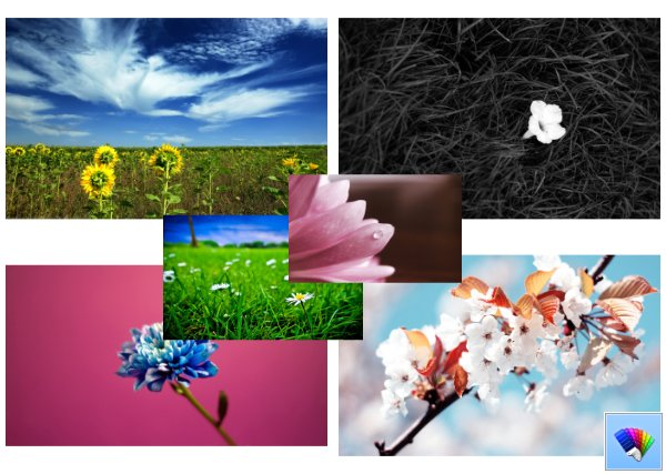 Blossom theme for Windows 8