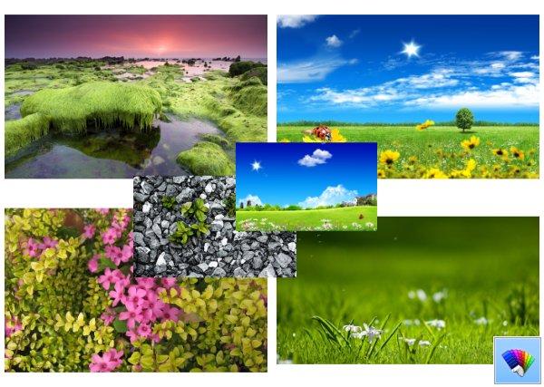 Green Bliss theme for Windows 8