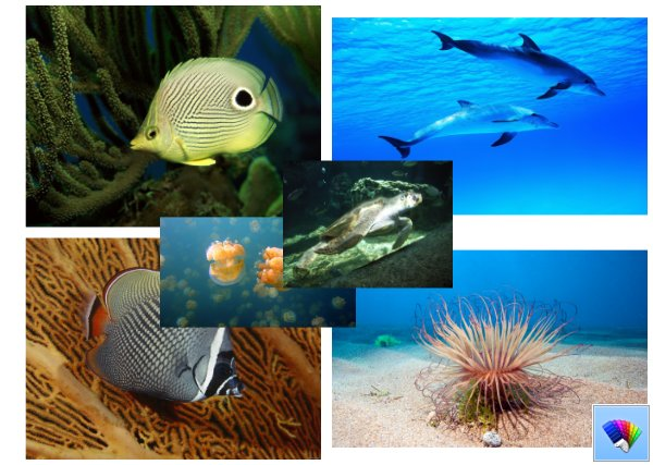 Ocean Life theme for Windows 8