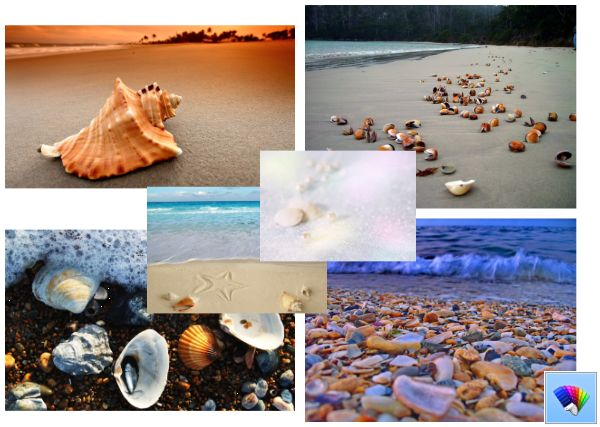 Sea Shell Theme for Windows 8