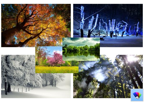 Trees theme for Windows 8