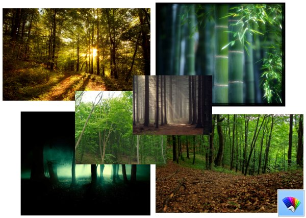 Forest theme for Windows 8