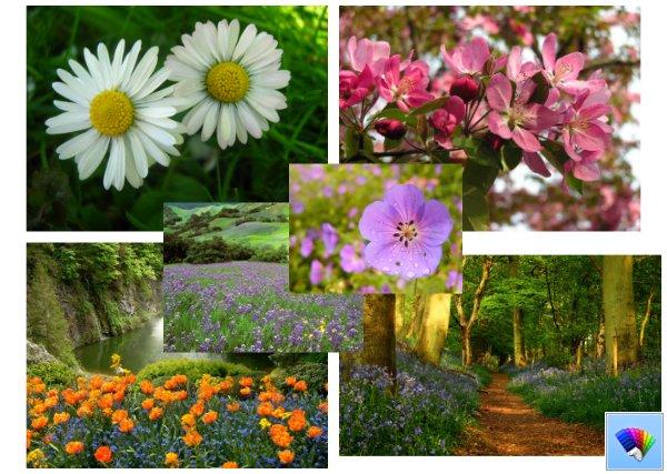 Spring Fresh theme for Windows 8