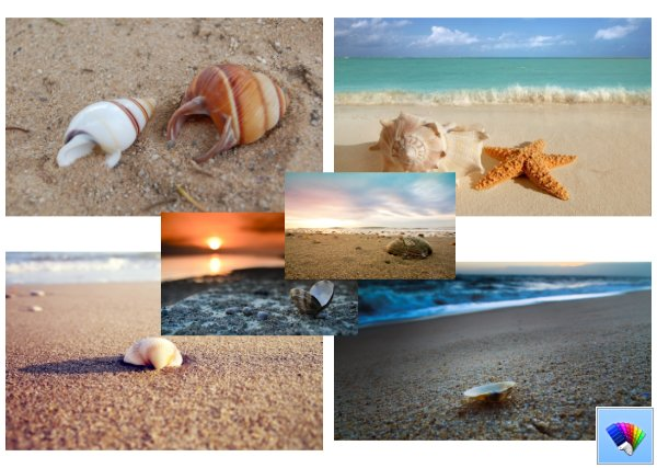 Shells on the Beach theme for Windows 8