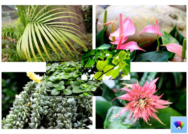World of Plants theme for Windows 8