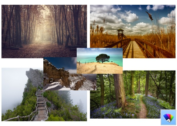 Wilderness Pathways theme for Windows 8