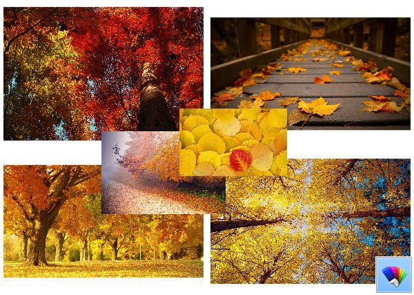 Autumn 2013 theme for Windows 8