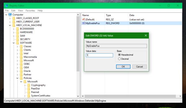 Windows Defender enable pus
