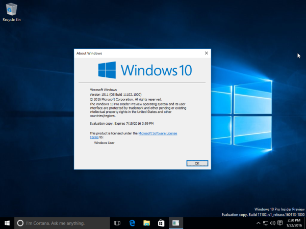 Windows 10 build 11102 winver