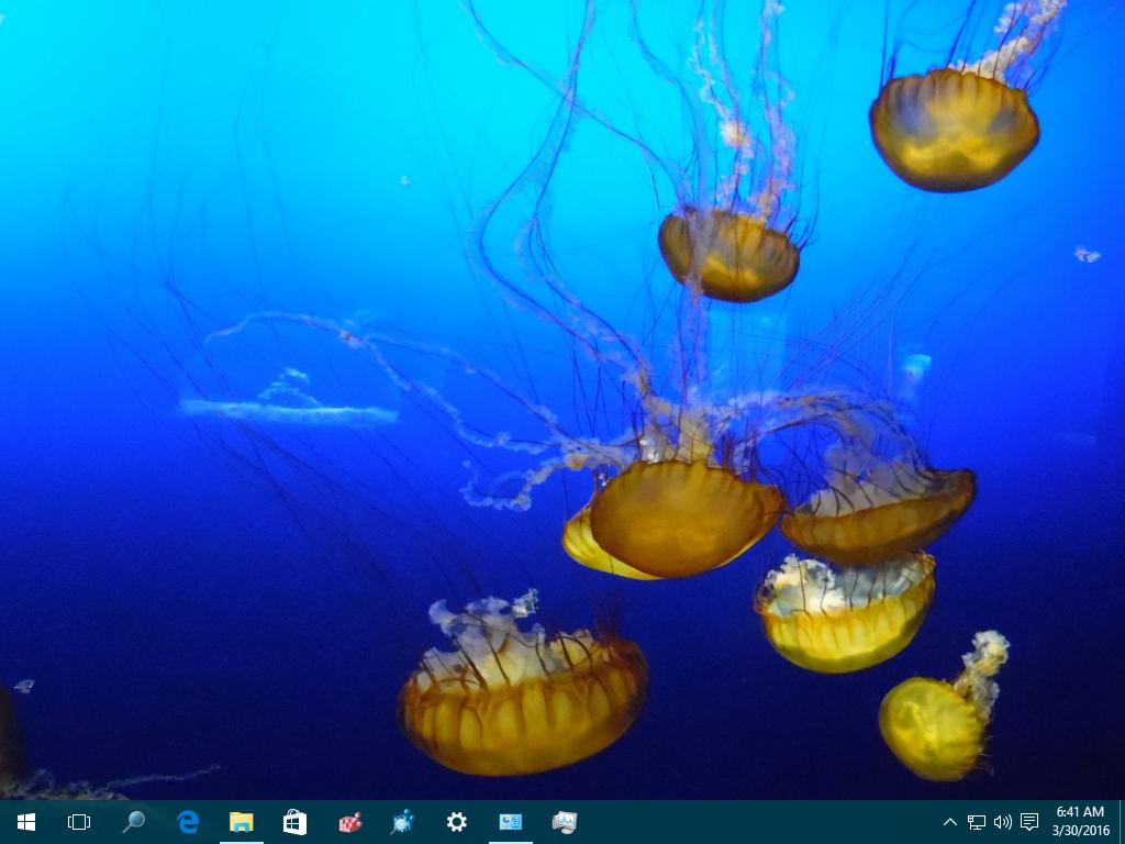 Xubuntu 2016 Theme For Windows 10, Windows 7 And Windows 8