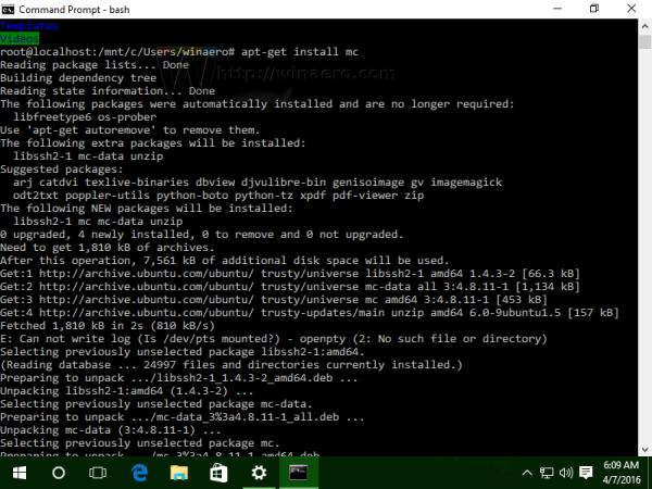 Windows 10 install mc