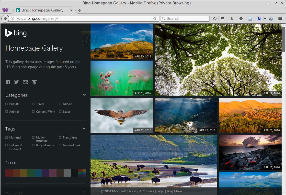Get Bing Wallpapers Without Bing Watermark