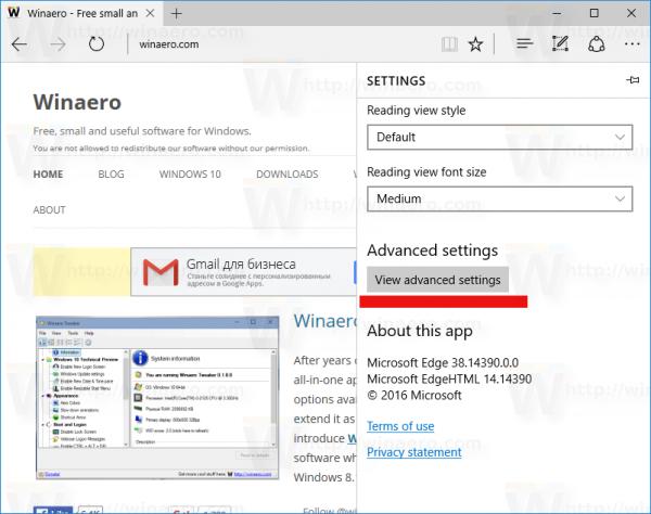 Windows 10 edge view advanced settings