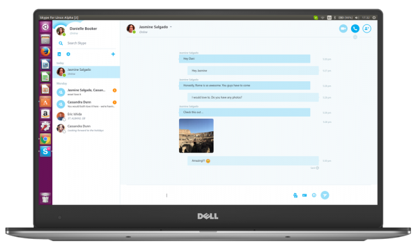skype for linux large