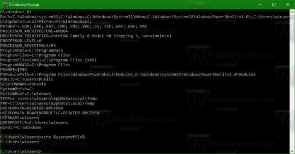windows-10-echo-environment-variable