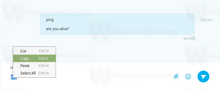Skype Input Area Context Menu