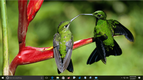 animals themes for windows 7 free download