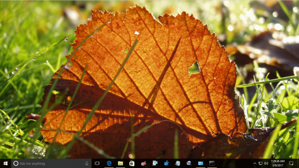 Fall Leaves Theme Windows 10 3