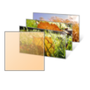 Fall Leaves Themepack Icon