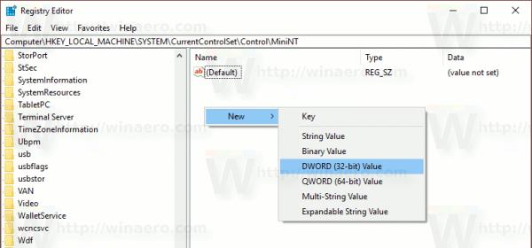 Windows 10 Dword In MiniNT Key