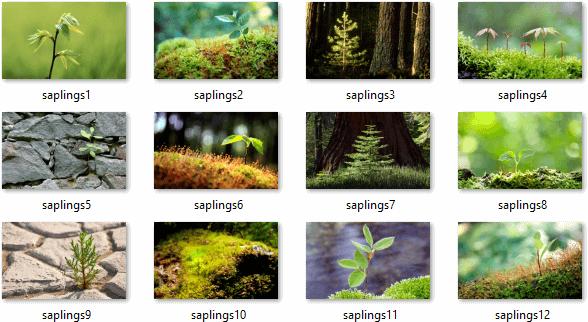 Saplings Theme Pack 01