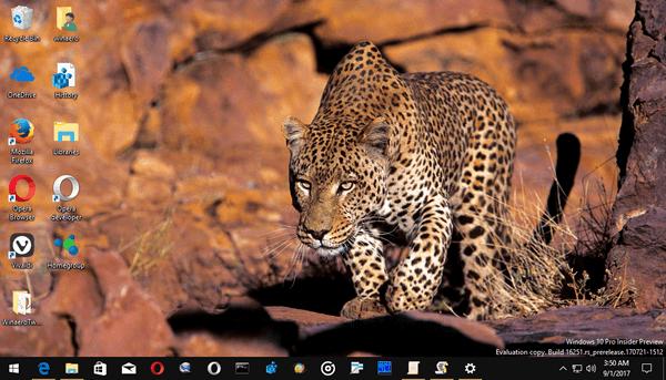 African Wildlife Wallpapers 5