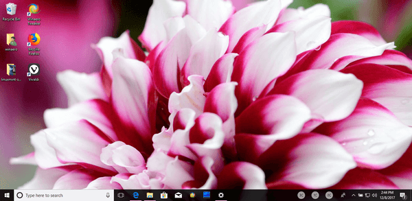 Download Fantastic Flowers Theme For Windows 10 8 And 7