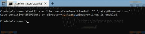 Query Case Sensitive Mode Windows 10