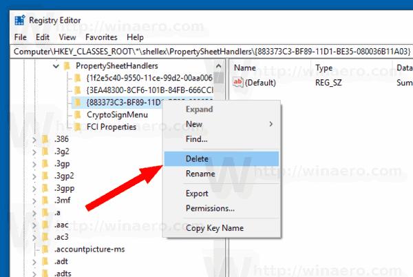 Windows 10 Remove Details Tab