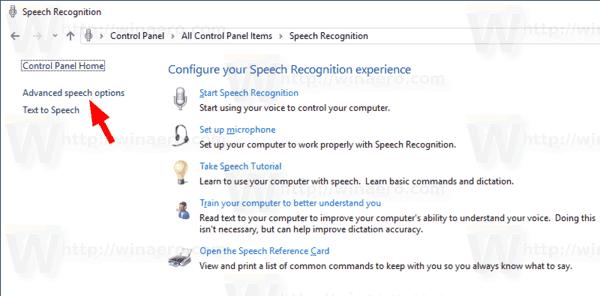 Speech Recongition Advanced Options Link