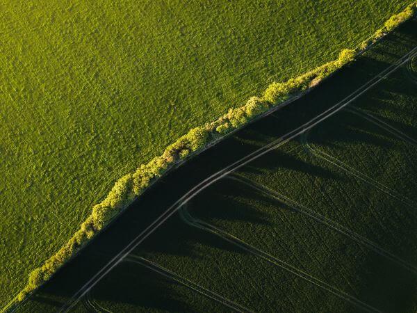 Ibandura Fields