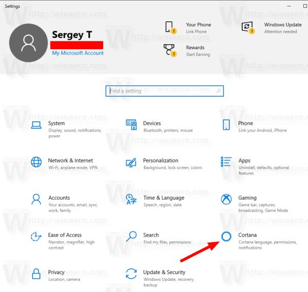 Cortana Icon Settings