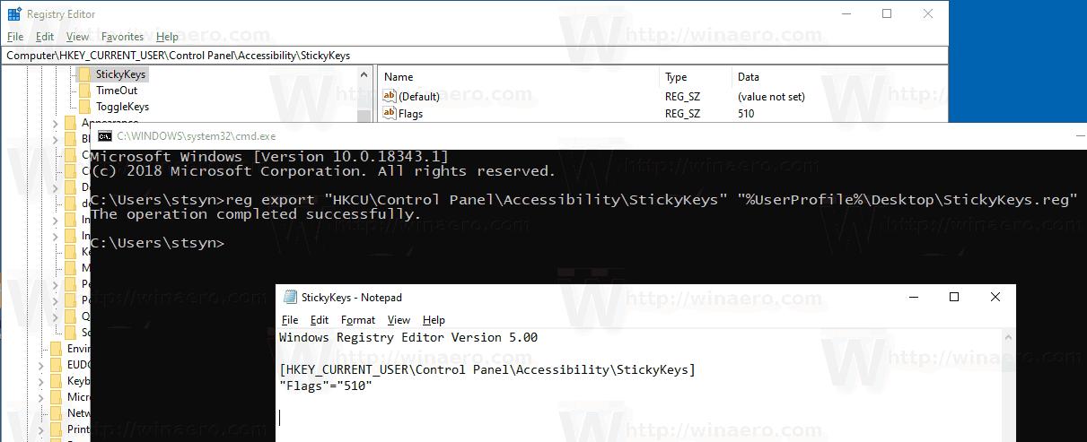 Windows 10 Backup Sticky Keys Options