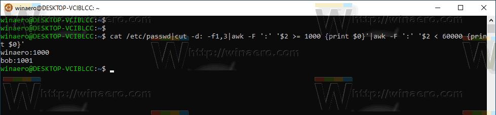 Windows 10 List WSL Users 3