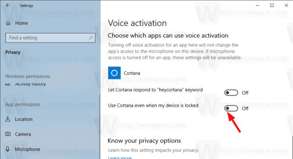 Windows 10 Privacy Voice Activation 03