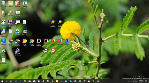 Windows 10 Indian Garden Themepack 4