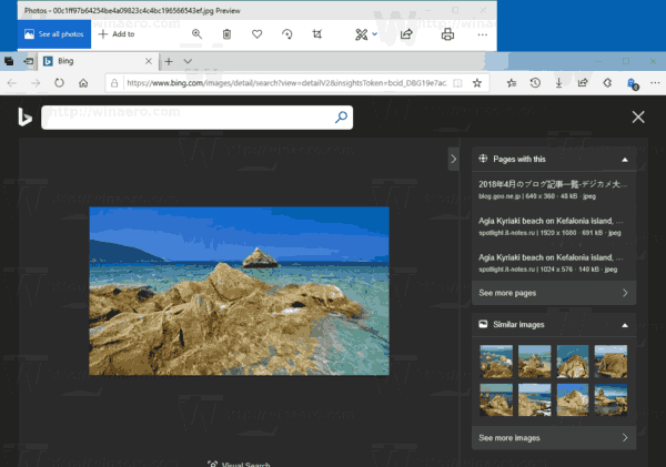 Windows 10 Photos Similar Image Search Result
