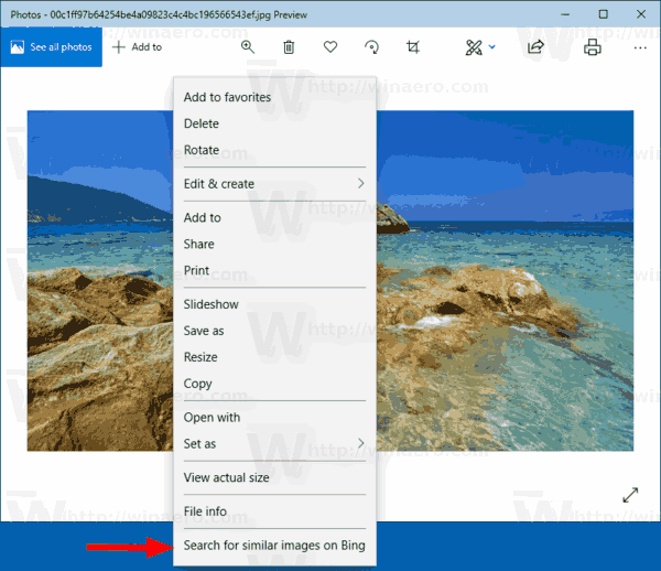 Windows 10 Photos Similar Image Search
