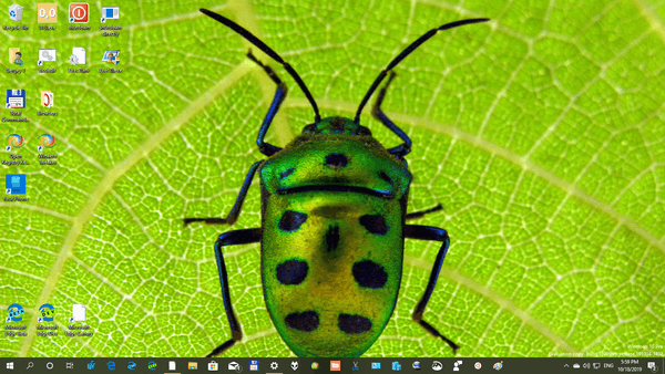 Insects 3 Themepack Image 6