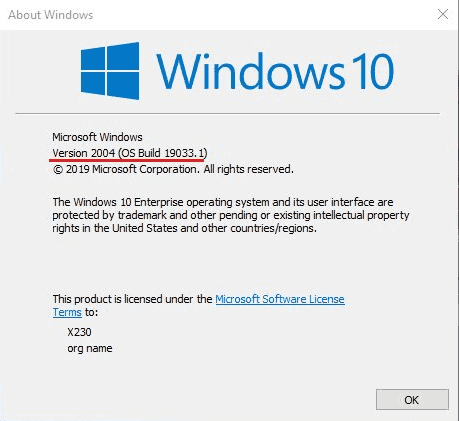 Windows 10 Version 2004 Build 19033 Winver