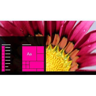 Summer Blooms Theme for Windows 10, Windows 8 and Windows 7