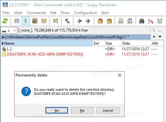 Windows 10 Reset Windows Hello ExecTI