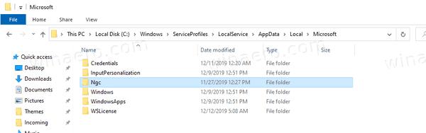 Windows 10 Reset Windows Hello