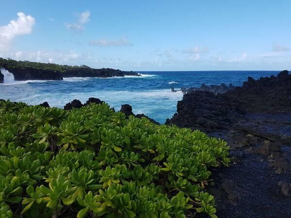 Linuxmint Hawaii