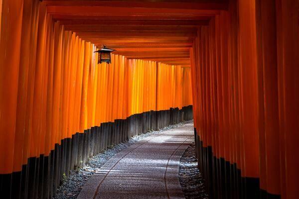 Ttucker Japan