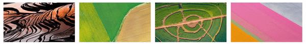 Aerial Farmland PREMIUM Stripe