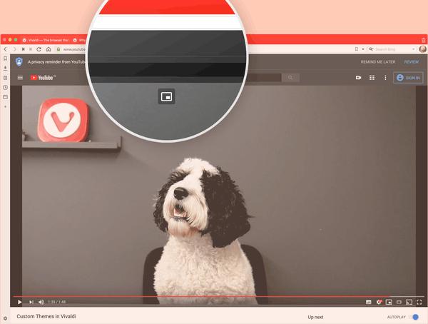 Vivaldi 2.11 PiP Screenshot Final