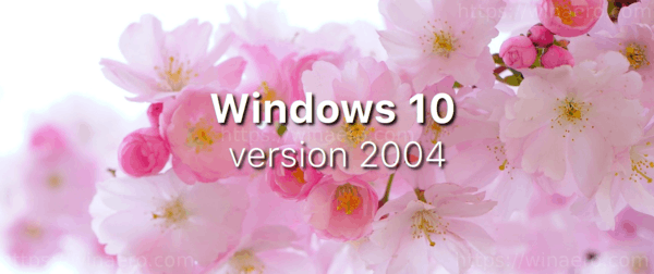 WIndows 10 Version 2004 20h1 Banner
