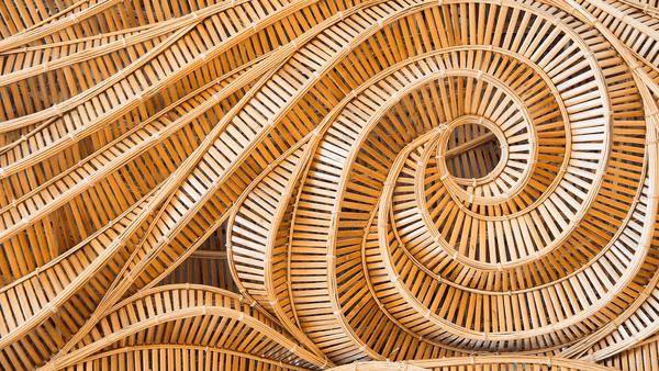 World Of Bamboo