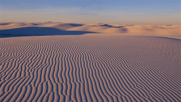 Desert Beauty PREMIUM Themepack